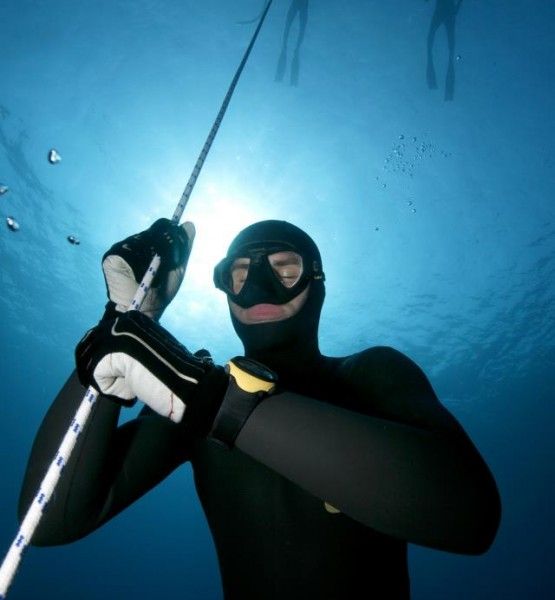 Diving Equipment rental - Services - Diving center B24
